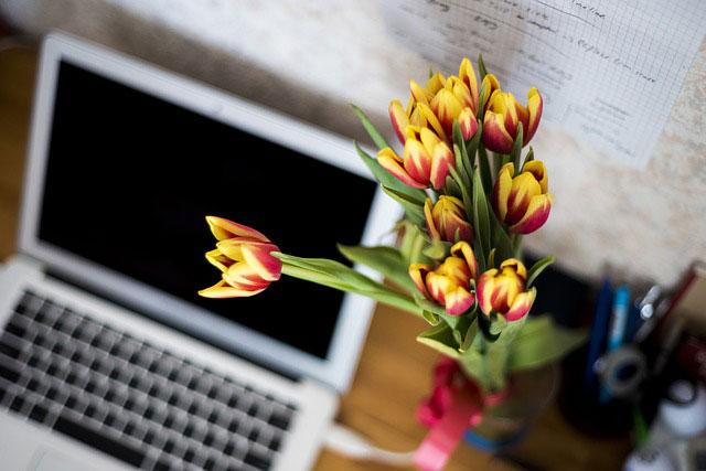 Czy kwiaty w biurze to dobry pomysł?